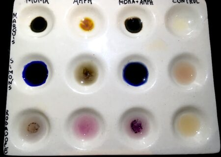 How to test MDMA with reagent test Marquis, Simon's and Robadope